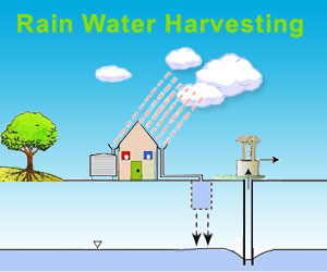 Be environmentally friendly with these green energy tips for Explanation of rainwater harvesting