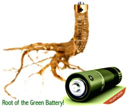 260_root_madder_battery