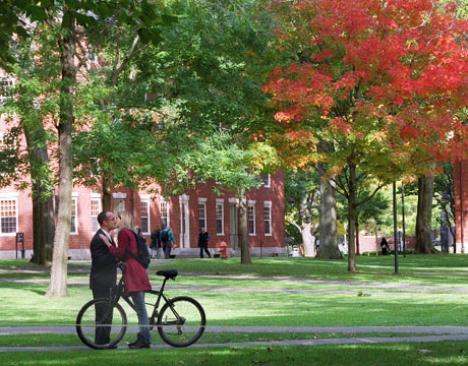 harvard-yard-green-campus