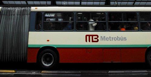 Metrobus_0