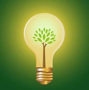 eco-friendly-business