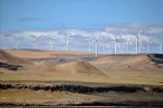 Shepherds_Flat_Wind_Farm_2011