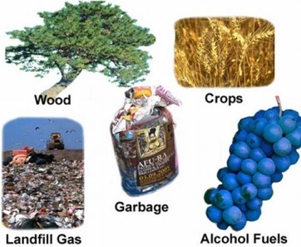 biomass_fuel