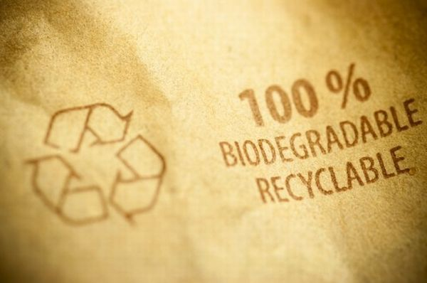 biodegradable-packaging-537x357