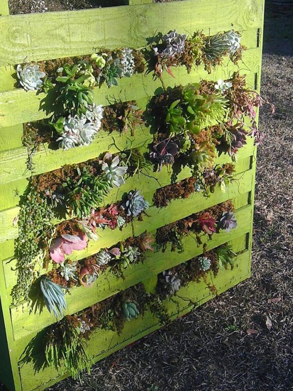 Five coolest examples of recycled shipping pallet art for How to make a recycled pallet vertical garden