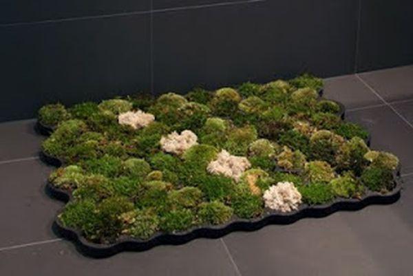 Moss Carpet (2)