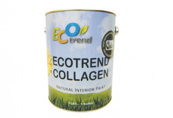 Eco-Trend-Collagen-Natural-Interior-Paint-Remodelista