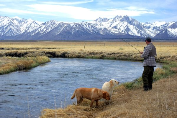 fishing-upper-owens-river