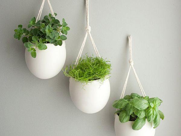 herb_pots