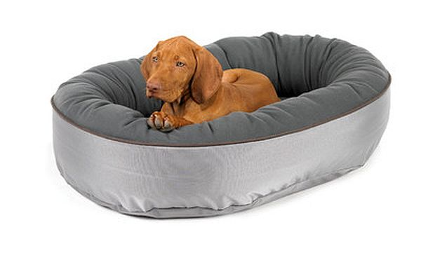 Bowsers-Orbit-Donut-Dog-Bed