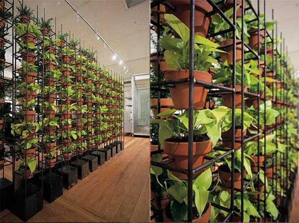 Innovative Ideas To Create An Indoor Garden Ecofriend