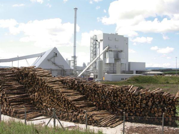 Biomass fired power plant
