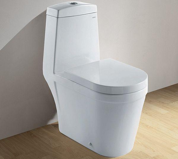 Dual Flush Toilets_3