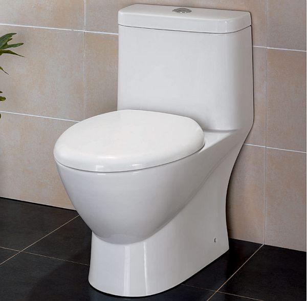 Dual Flush Toilets_4