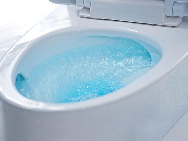Dual Flush Toilets_5