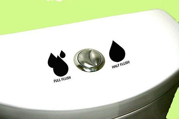 Dual Flush Toilets_7