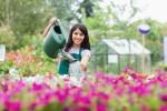 Watering a Garden