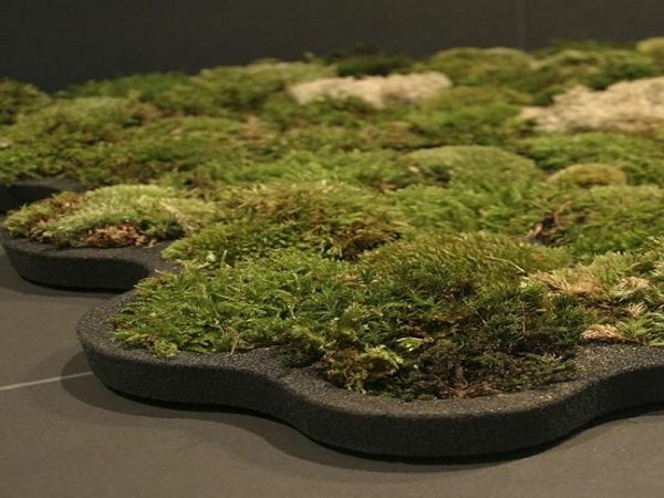 Living bath moss mat