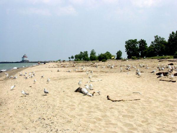 Ohio Beach