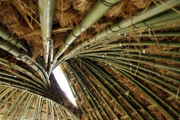 Bamboo dome shelter  2