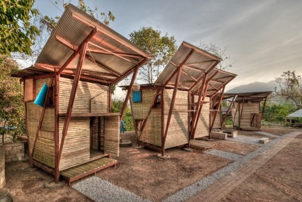 Butterfly bamboo homes 1