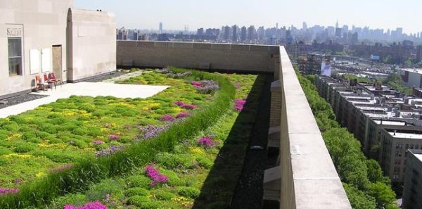 Green roofs 2
