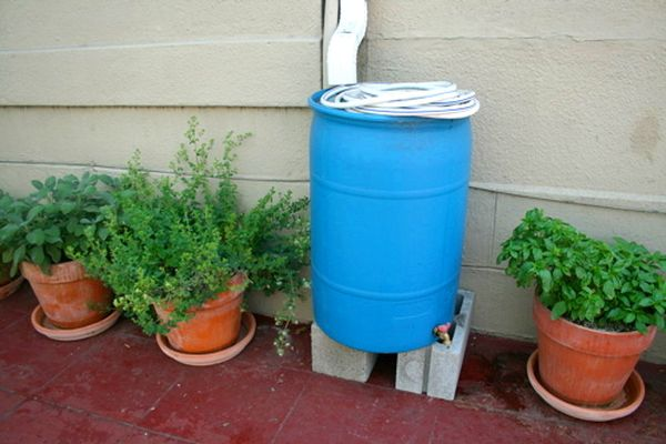 rainwater harvesting in containers