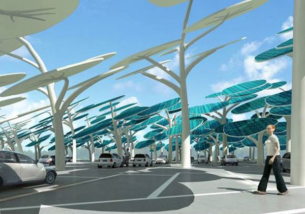 A forest of solar trees