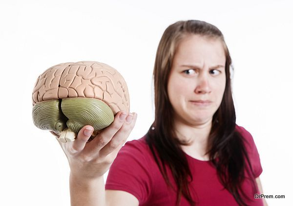 Cute brunette frowns at anatomical model of human brain