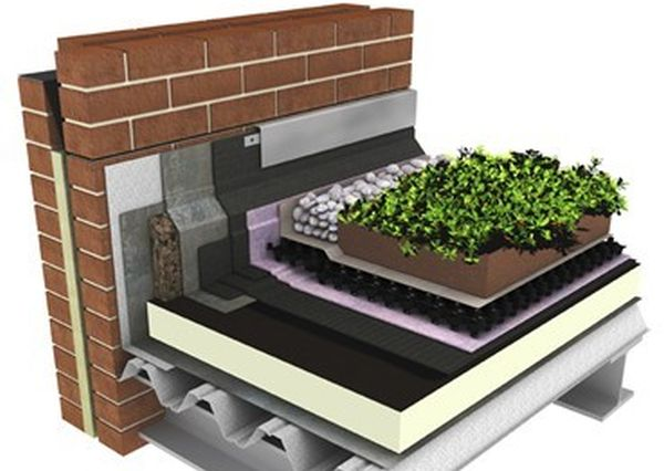green-roofs-2