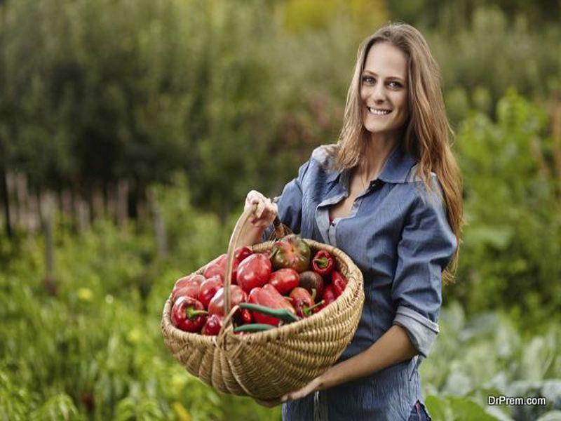 Creating an Organic Garden (1)