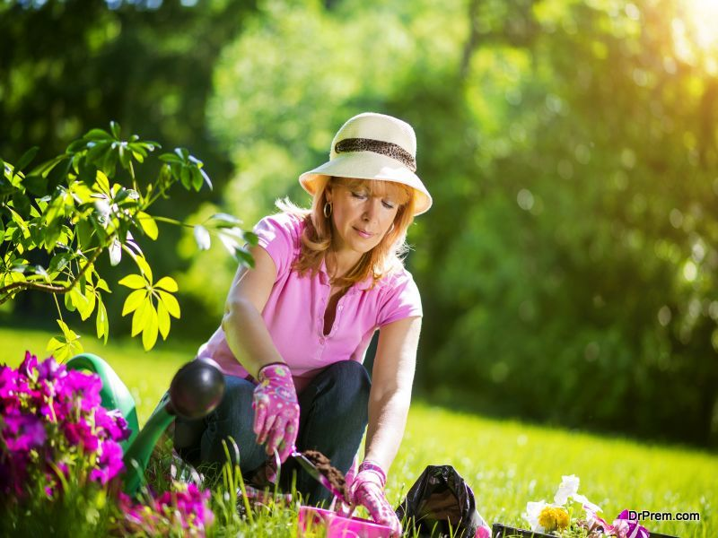 Gardener taking care of her plants in a garden