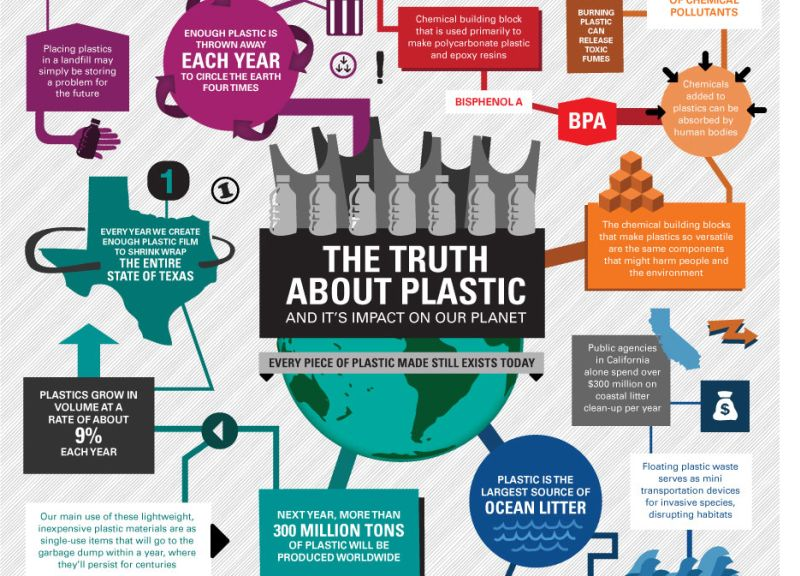 Infographic Environmental Toll Of Plastic Revealed