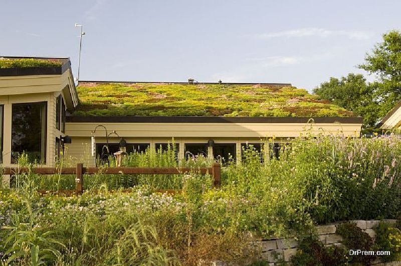 Eco-Friendly-Roof