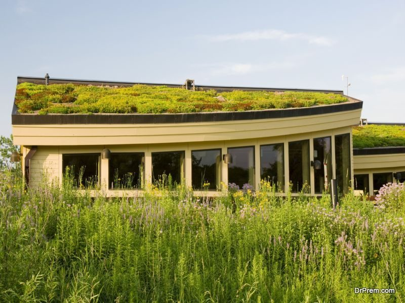 green-roof.