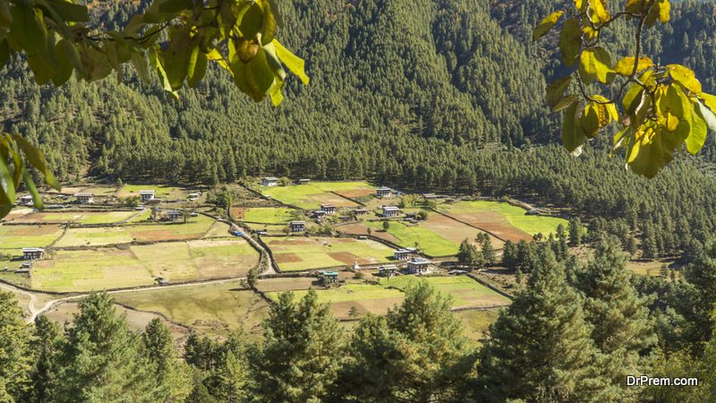 Gangtey-Valley