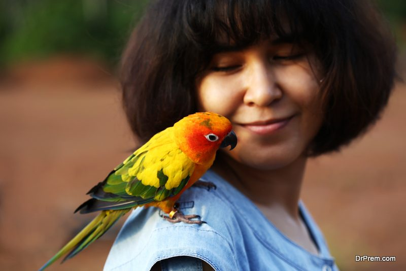 use-birds-for-pest-control
