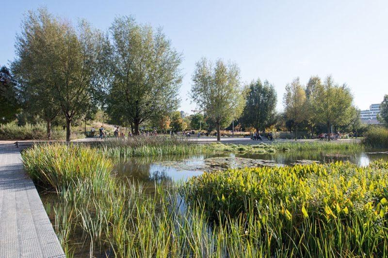 Martin Luther Biodiversity Park