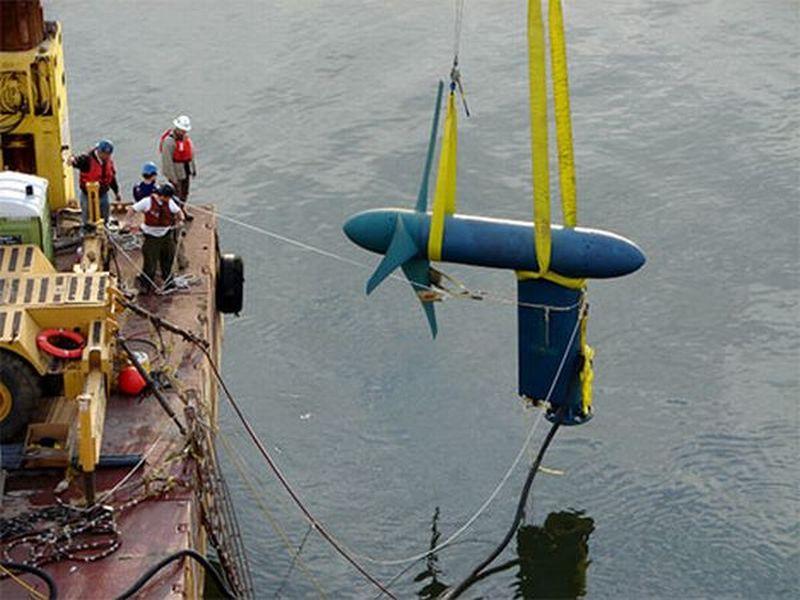 Free flow underwater turbines