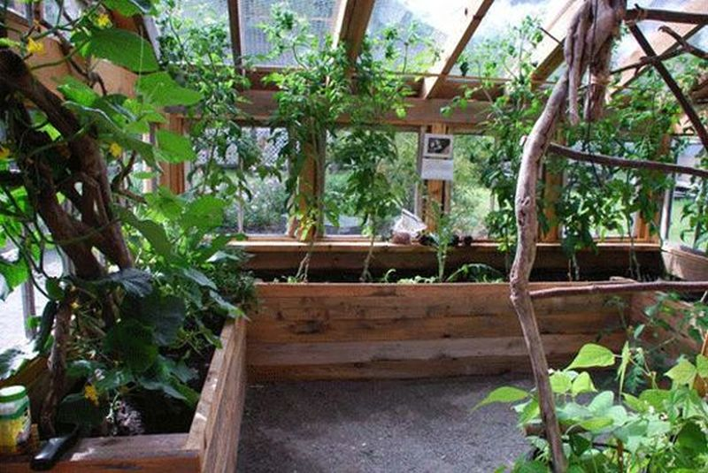 Amateur artist built eco-friendly greenhouse from recycled materials