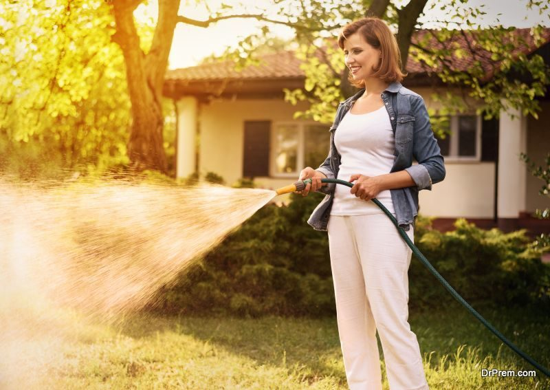 Reduce watering your lawn