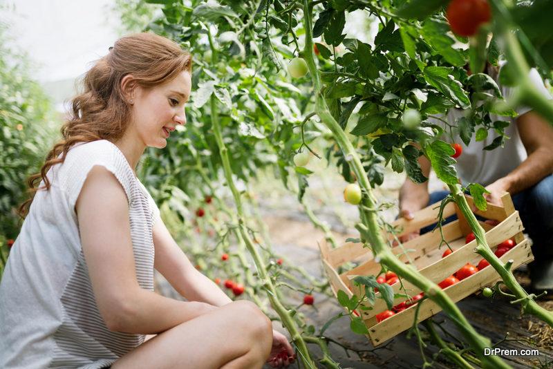on-site organic garden