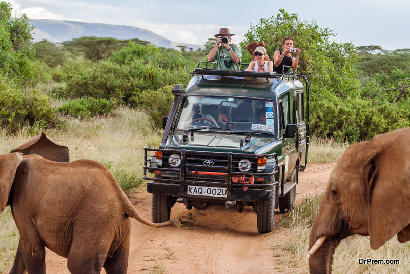 elephant safaris are hugely popular in Asian destinations