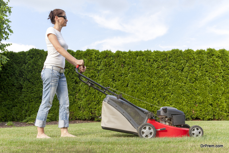 Selecting the Right Lawn Mower