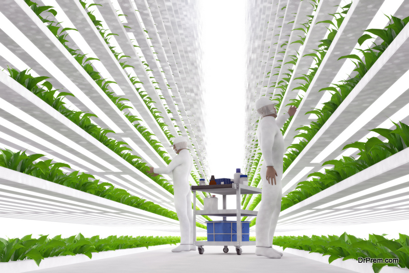about Vertical Farming