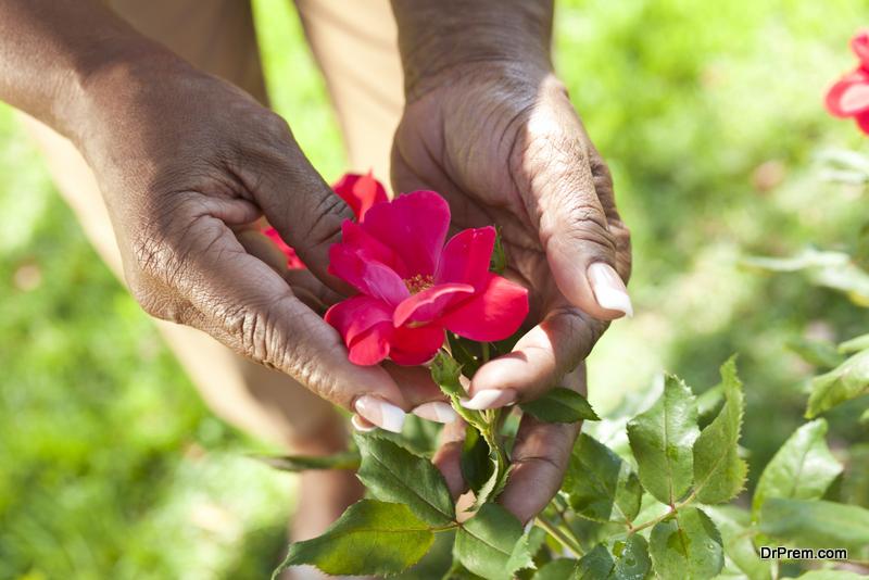 worker in floriculture