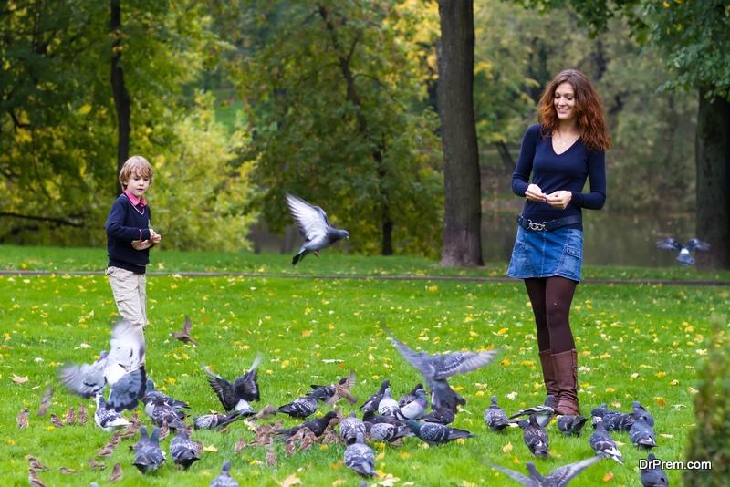 Feed-birds-carefully