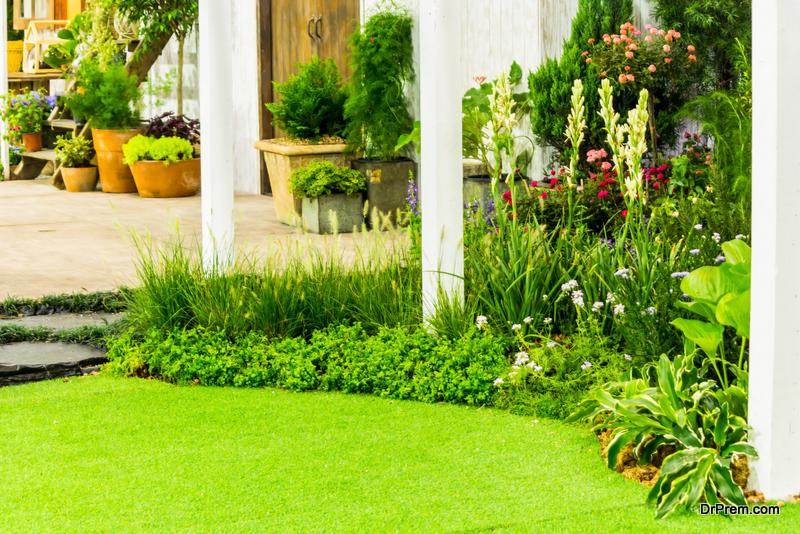 Eco-friendly-Landscape