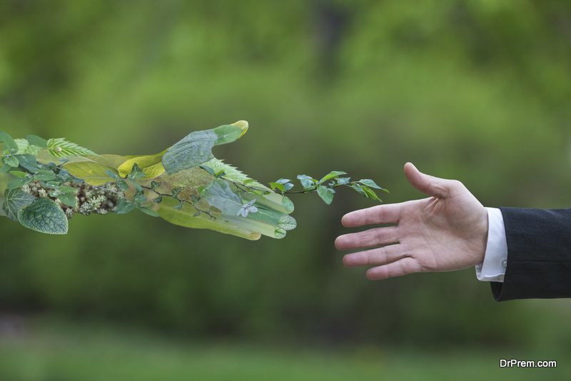Make Your Business More Sustainable