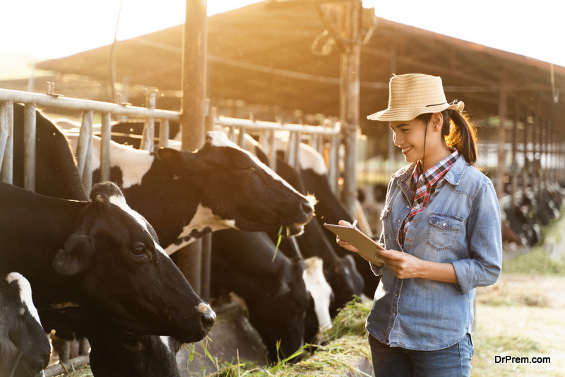 woman-keeping-track-on-Livestock